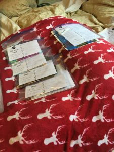 bed with ziplocks on it with sewing projects in process in ziplock bags